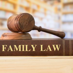 Divorce Lawyer in Michigan